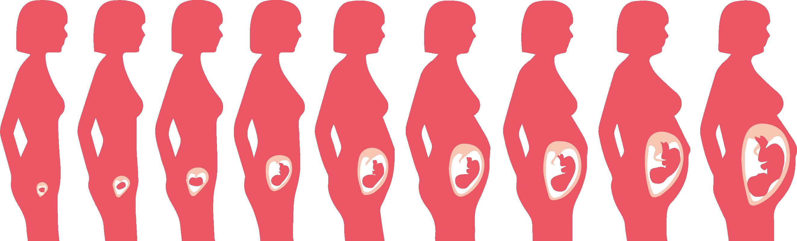 que es solfa syllable toxemia of pregnancy linear unit español